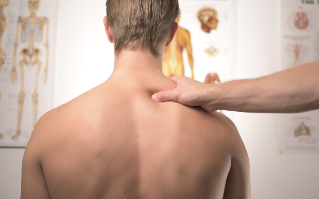 Rückenschmerzen? Da kann das ARTHROCANN Wärmegel kommen!